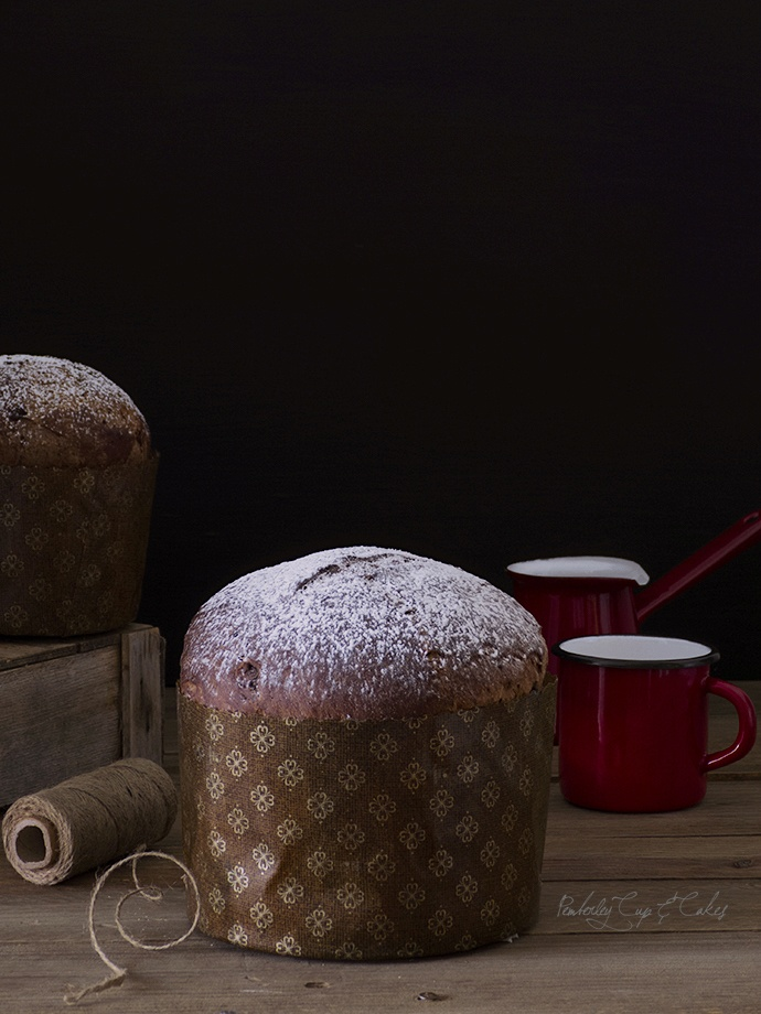 Placentero Panettone de chocolate